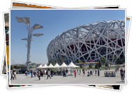 Bird's Nest Stadium