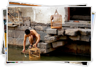 Daily life by a Suzhou canal