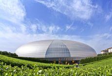 The Egg in Beijing